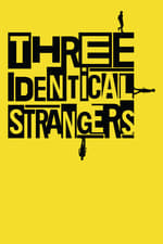 Movie Three Identical Strangers ( 2018 )