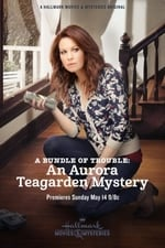 Movie A Bundle of Trouble: An Aurora Teagarden Mystery ( 2017 )