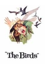 Movie The Birds ( 1963 )