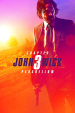 Movie John Wick: Chapter 3 – Parabellum ( 2019 )