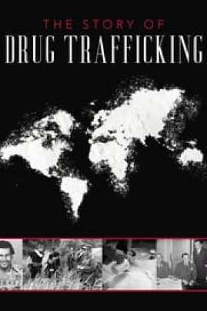 The Story of Drug Trafficking