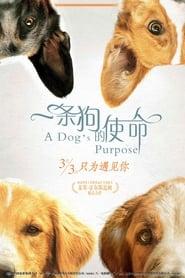 a dogs purpose full movie online free putlockers