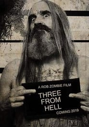 3 from Hell streaming vf