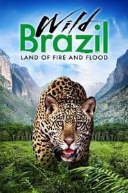 Wild Brazil streaming vf