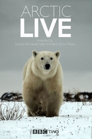 Arctic Live streaming vf