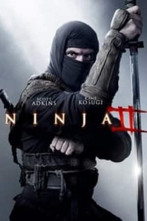 Ninja 2: Ombre d'une déchirure