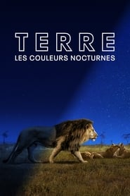 Terre : les couleurs nocturnes streaming vf