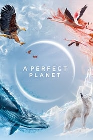 Un planète Parfaite streaming vf