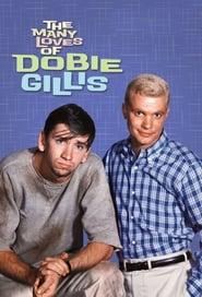 The Many Loves of Dobie Gillis streaming vf