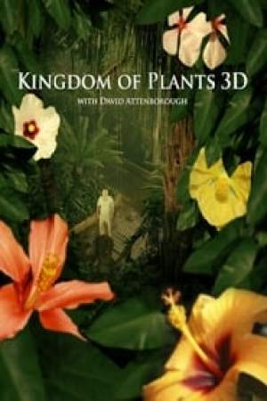 Kingdom of Plants