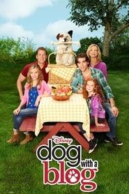 #doggyblog  streaming vf