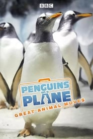 Penguins on a Plane: Great Animal Moves streaming vf
