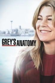 Grey's Anatomy streaming vf