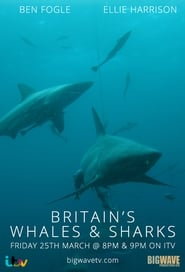 Britain's Whales and Sharks streaming vf