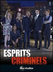 Esprits criminels streaming vf