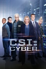 Les Experts : Cyber streaming vf