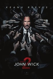 Streaming Movie John Wick: Chapter 2 (2017) Online