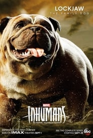 Watch Full Movie Online Marvel's Inhumans: The IMAX Experience (2017)