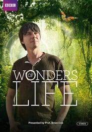 Wonders of Life streaming vf