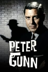 Peter Gunn streaming vf
