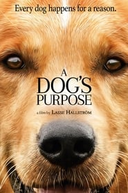 Streaming Full Movie A Dog's Purpose (2017)