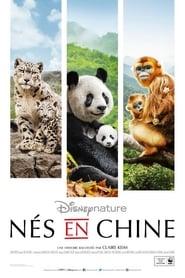 Nés en Chine streaming vf