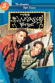 Les frères Wayans streaming vf