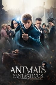 Watch Movie Online Fantastic Beasts and Where to Find Them (2016)