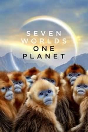 Une planète, deux mondes sauvages