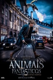 Download and Watch Movie Fantastic Beasts and Where to Find Them (2016)