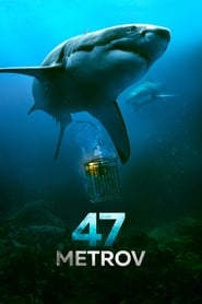 Streaming Full Movie 47 Meters Down (2017) Online