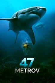 Streaming Full Movie 47 Meters Down (2017) Online