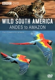 Andes to Amazon streaming vf