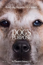 Watch and Download Movie A Dog's Purpose (2017)