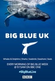 Big Blue UK streaming vf