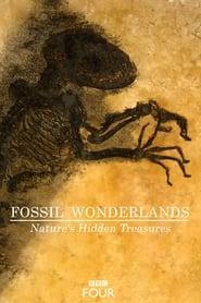 Fossil Wonderlands: Nature's Hidden Treasures streaming vf