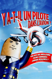Y a-t-il un pilote dans l'avion ? streaming vf