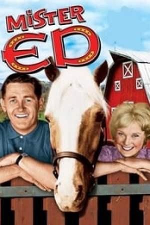 Monsieur Ed, le cheval qui parle