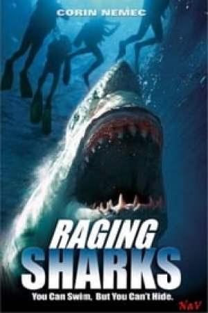 Requins tueurs