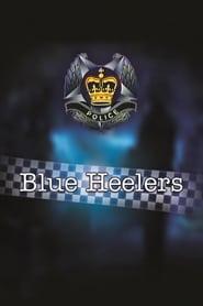 Blue Heelers streaming vf