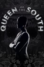 Queen of the South streaming vf