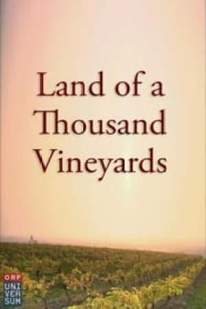 Land of a Thousand Vineyards