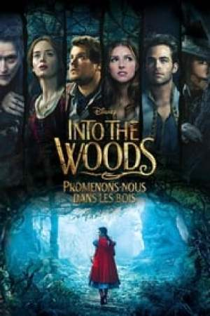 Into the Woods : Promenons-nous dans les bois