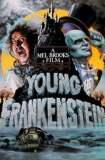 Watch and Download Movie Young Frankenstein (1974)