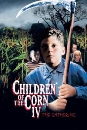 Les enfants du maïs 4 - La moisson