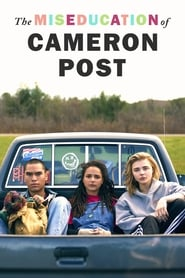Watch Full Movie Online The Miseducation of Cameron Post (2018)