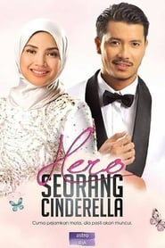 Hero Seorang Cinderella streaming vf