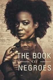 The Book of Negroes streaming vf