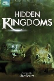 Hidden Kingdoms streaming vf