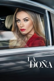 La Doña streaming vf